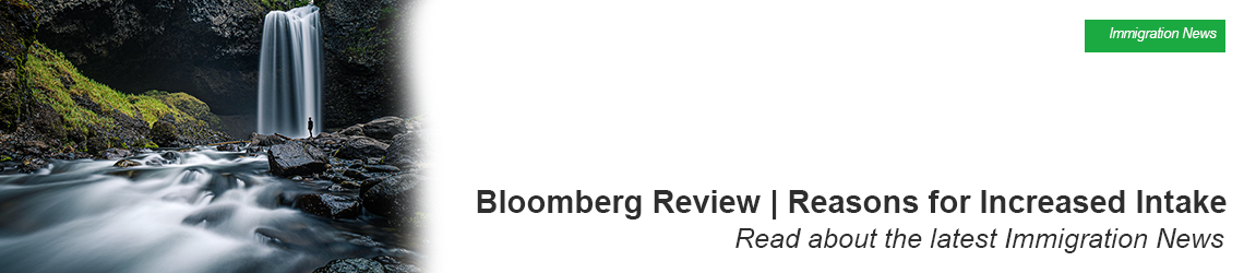 Bloomberg Review | Reasons for Increased Intake